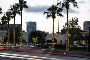 Numerous Shopping Options at Highland Village near Windsor at West University, Houston, 77005