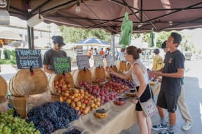 Close By Farmer's Market at Malden Station by Windsor, Fullerton, California