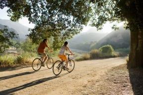 Beautiful Biking Trails near Pavona Apartments, 95112, CA