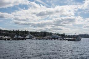 Only a Short Walk to the Lake Washington Waterfront at Tera Apartments, Kirkland, WA