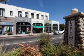 Larchmont Village Shopping near Windsor at Hancock Park, Los Angeles, California