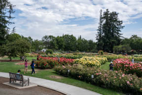 Riverside Park & Heritage Rose Garden Within Walking Distance at Pavona Apartments, 760 N. 7th Street, CA