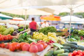Fresh Fruits And Veggies From Farmers Market near The Ridgewood by Windsor, Fairfax, Virginia