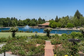 Surrounded by majestic views of Mount Diablo. From Villa Montanaro, California