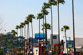 Close to World Class Shopping and Entertainment at Windsor Lofts at Universal City, Studio City, California