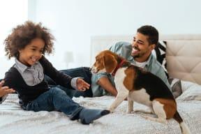 Pet Friendly Apartment Community at Jack Flats by Windsor, Massachusetts, 02176