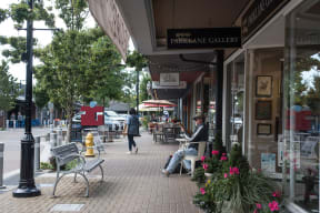 Boutique shopping and dining at Tera Apartments, Washington, 98033