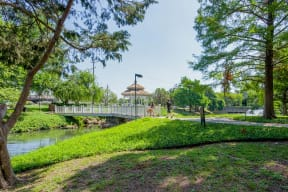 Beautiful Park Around The Community at Windsor by the Galleria, 75240, TX