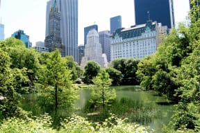 Apartments Close to Central Park at The Aldyn, NY, 10069