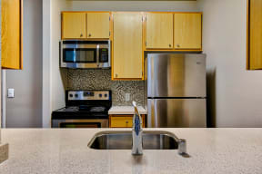 Stainless steel appliances at Allegro at Jack London Sqaure