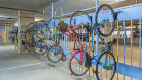 Efficient vertical bike racks offer generous space for bike storage. at Eleven by Windsor, Austin
