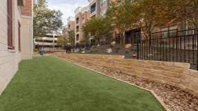 Our enclosed dog park is the perfect spot for catch at Eleven by Windsor, Austin, Texas