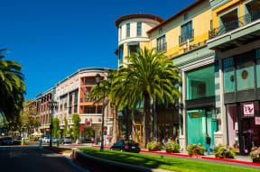 Near Shopping at Santa Row in San Jose at Blu Harbor by Windsor, 1 Blu Harbor Blvd, CA