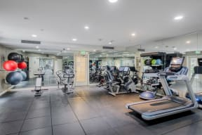 Fitness Center at Windsor at Hancock Park