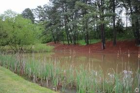 Legacy at Norcross, Norcross Georgia, apartment community pond