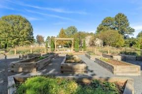 Garden area on property