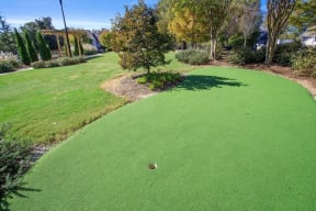 Outdoor activity area with mini golf and others