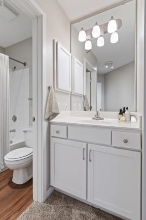 Galtier Towers Apartments in Lowertown St. Paul Bathroom