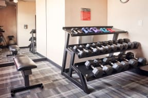 Pet-Friendly Apartments in San Jose, CA - Aviara Apartments Fully Equipped Gym with Weight and Machinery