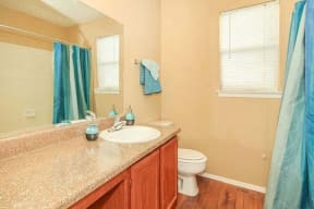 Bathroom with Counterspace and Bath Shower Combo
