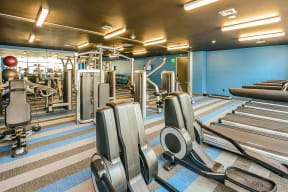 Cardio Machines, Free Weight and Much More