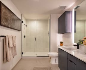 Bathroom With Glass Shower at North+Vine, Illinois