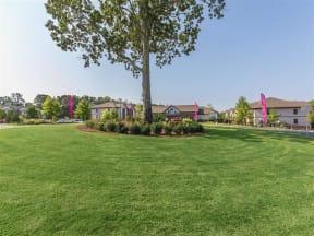 Lush Green Outdoor Spaces at One White Oak, Georgia, 30041