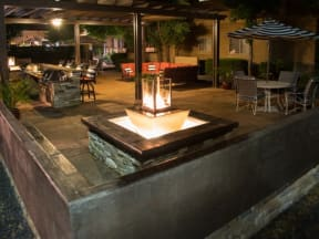 Firepit  l Vineyard Gate Apartments in Roseville CA