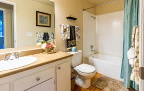 Bath with Oversized Vanity