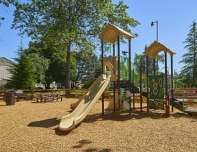 Playground with a large slide and thing to climb on. Area completed with wood chips and surrounded with trees.
