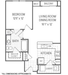 Floor Plan A1 Floorplan