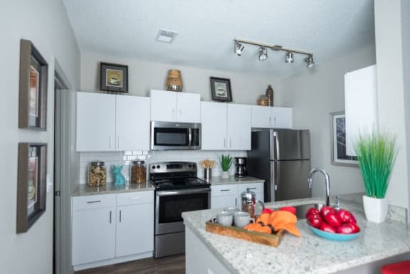 Stainless Steel Appliance Packages at 1000 Spalding Apartment Homes, Atlanta