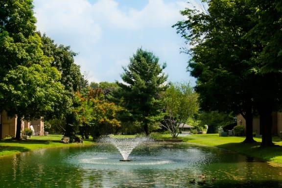 Buildings around Pond with Fountain