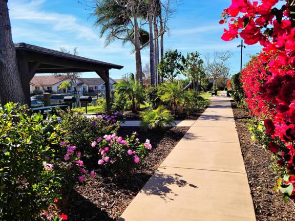 Park at Bella Park Apartments, California 92376