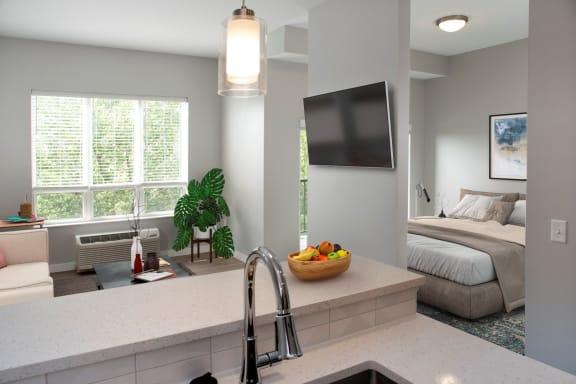 nordic studio floor plan, living and bedroom, floating tv wall