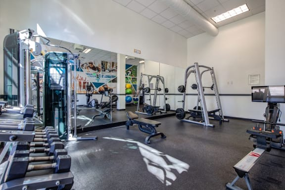 Free weights in 24-Hour Fitness Studio at at  Discovery Heights in Issaquah, Washington