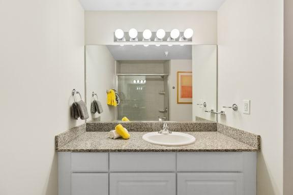 Model Bathroom at Lofts of Merchants Row, Detroit, MI, 48226