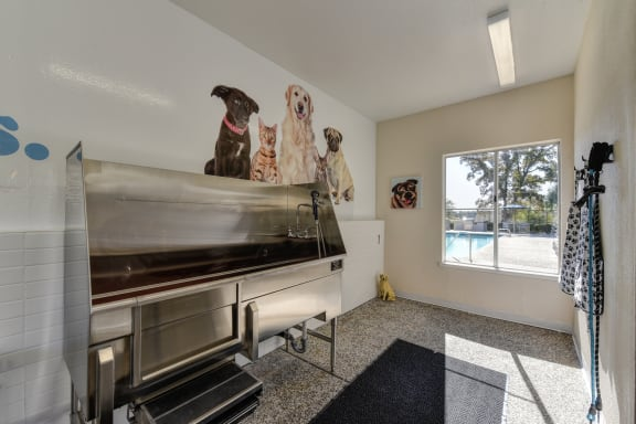 Community Pet Spa which includes stainless steel dog washing tub with walk up ramp. There are floor mats on the ground to prevent slipping and a large window with views of a pool