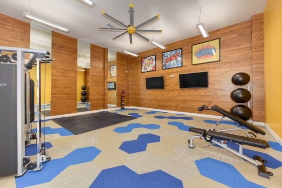 Community Fitness Center Gym with Cardio and Weight Machines, Yoga Balls and Mirrors