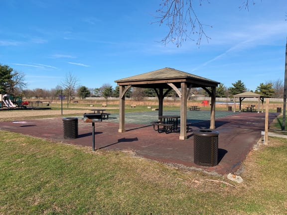 Picnic Area With Grilling Facility at Pickwick Farms Apartments, Indianapolis, IN, 46260