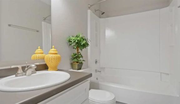 Guest Bathroom at Forest Cove, Doraville, GA, 30340