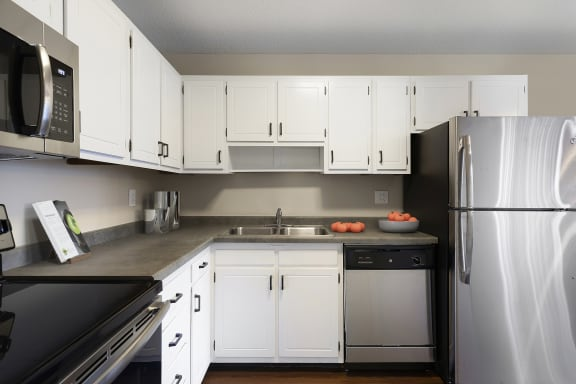 View of Kitchen with Stainless Steel Appliances - Axon Green Apartments in West Maka Ska