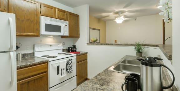 Eden Commons Apartments in Eden Prairie, MN Kitchen Electric Stove