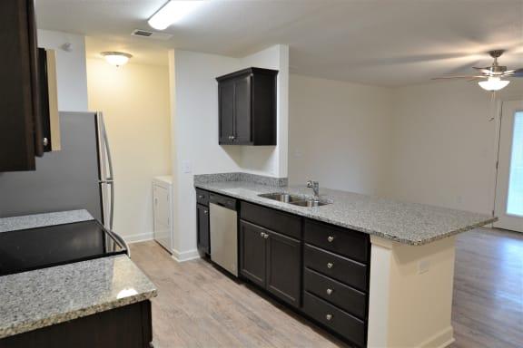 Granite Counter Tops In Kitchen at Shenandoah Properties, Indiana, 47905