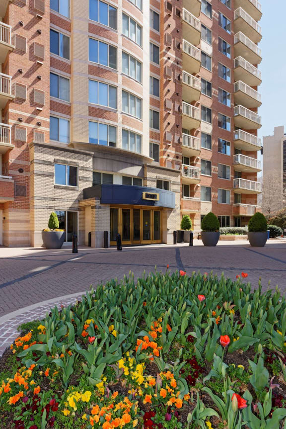 main entrance at Aura Pentagon City apartments with flower bed in the foreground