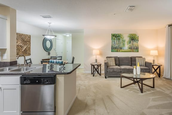 The Colony at Deerwood - Premium home features