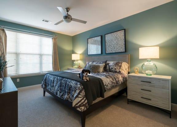 Bedroom With Expansive Windows at Berkshire Ninth Street, North Carolina, 27705