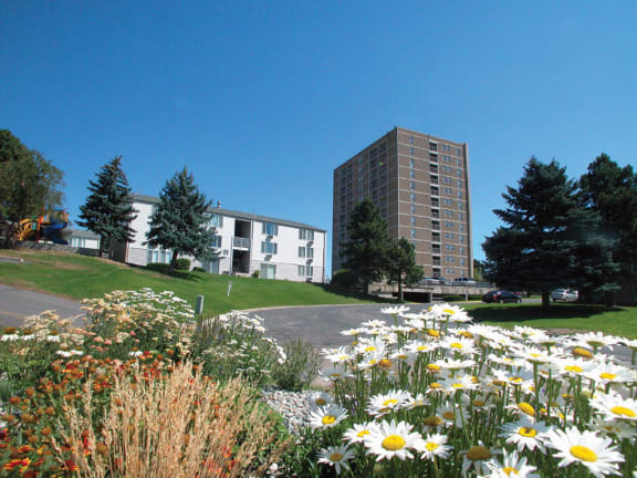 open green space at  Ridgemoor Apartment Homes in Lakewood, CO