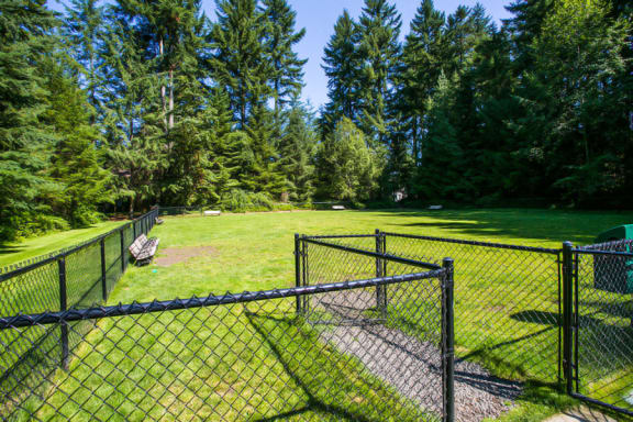 Gated Off-leash Dog Park at Apartments Near West Seattle