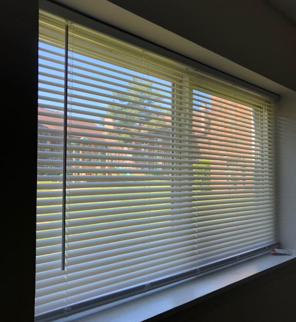 Blinds Included at Candlewyck Apartments, Michigan, 49001